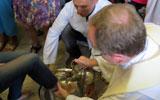 A celebração do Lava-pés no Convento